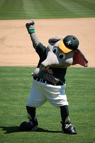 Even Stomper's excited!