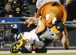 crazy-crab-attacks-stomper A's mascot